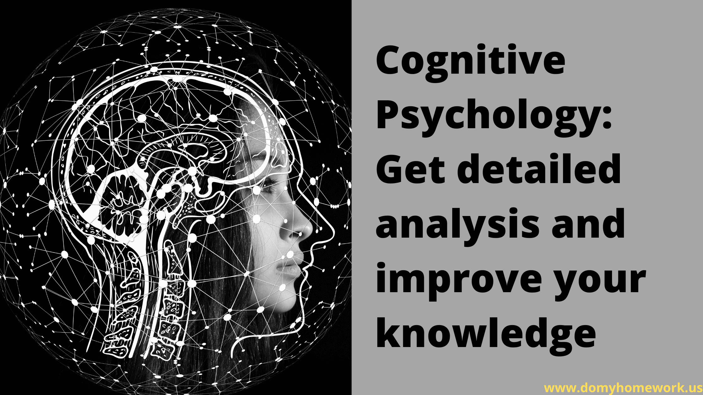 Cognitive-Psychology